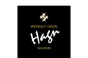 Weingut Hang is Partner of Take Festival